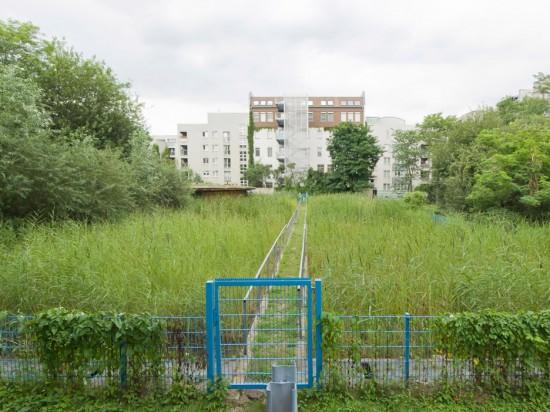 49: Hof mit Grauwasser-Pflanzenkläranlage • Bernburger Straße, Dessauer Straße • Hans Loidl • Block 6 • Zustand Juli 2012 • Foto: Gunnar Klack