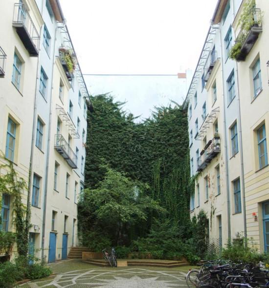 118: Begrünung Hinterhof • Naunynstraße 62 • Block 79 • Zustand Juli 2012 • Foto: Gunnar Klack